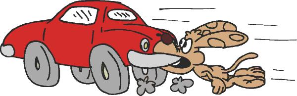 dog_catches_car