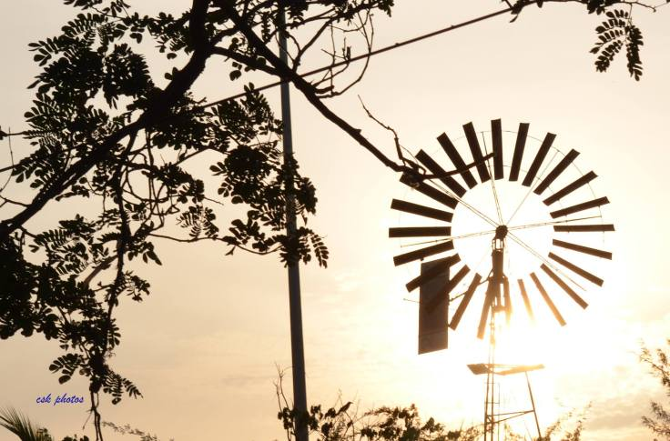 Wind Mill and Sun Rise