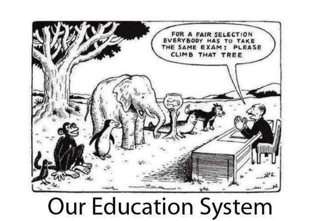 education-system-cartoon.jpg?w=630
