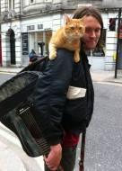 Courtesy : A Street Cat Named Bob