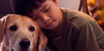 Little Boy and his Dog Pat