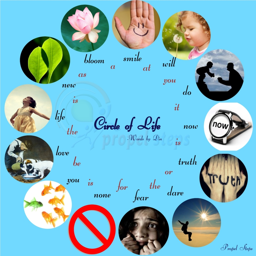 http://propelsteps.files.wordpress.com/2013/08/circle-of-life-mid.jpg