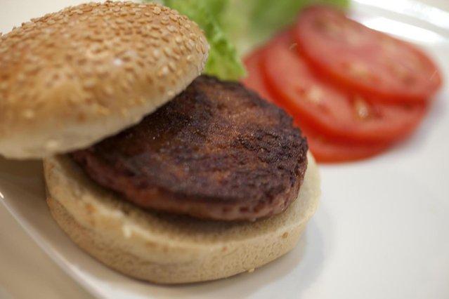 Lab Burger (6)