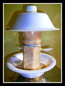 Cup n Pet bottle Bird feeder