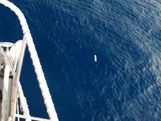 5-gyres-ocean-plastic-pollution-537x405