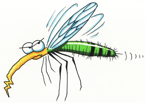 mosquito-clip-art-9