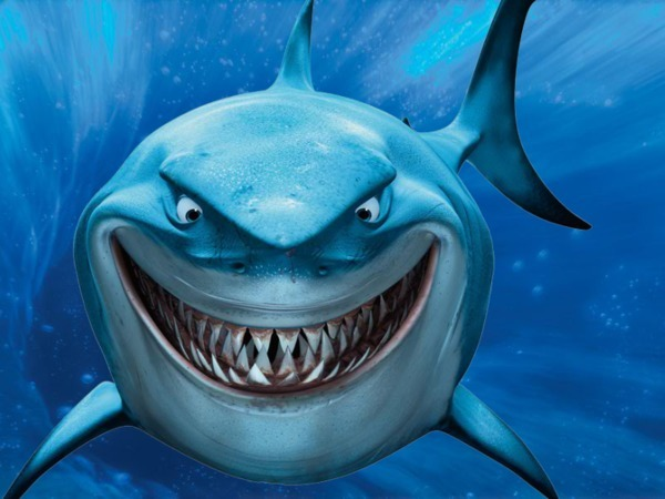Story : Barriers are just in our thoughts! : Shark ...