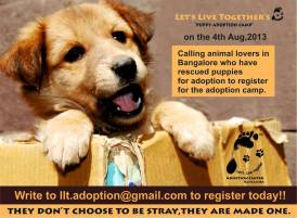 Adoption campaigns
