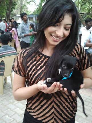 An Actress Adopting Dog