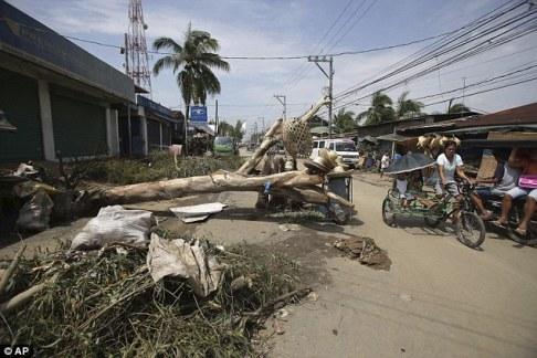 Cyclone Phailin (22)