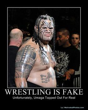 WrestlingIsFake_xlarge
