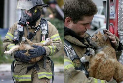 fireman5