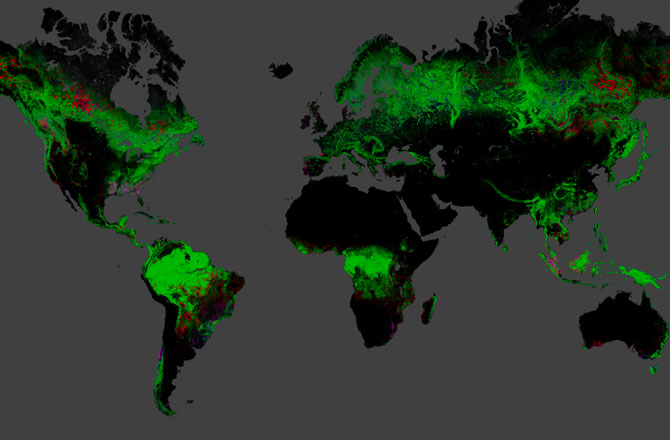 global-map-forests