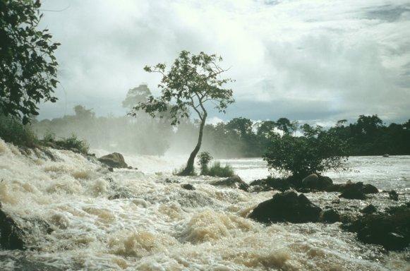Lobe waterfalls Kirbi Cameroon