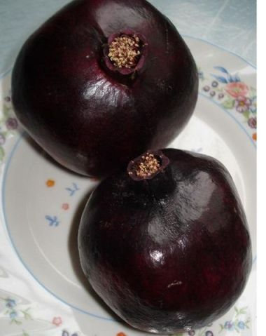 Black_Pomegranate