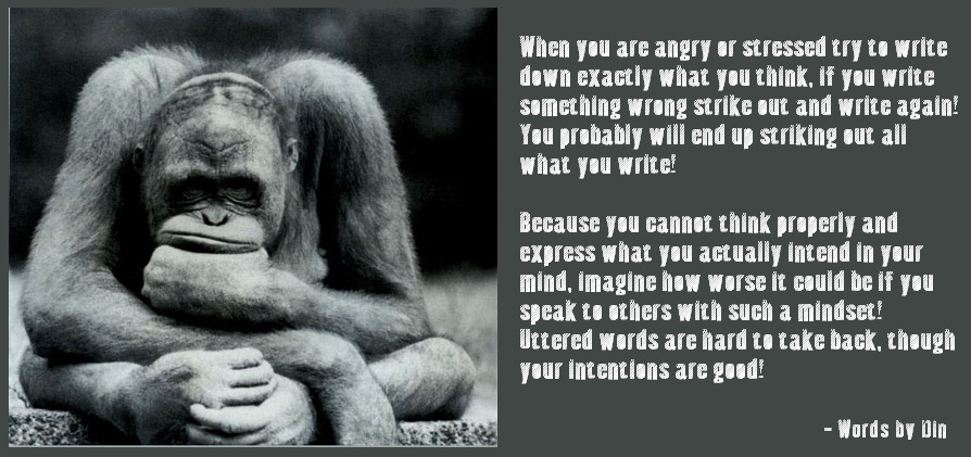 Confused Monkey PROPEL STEPS Interesting Quotes On Confused Mind