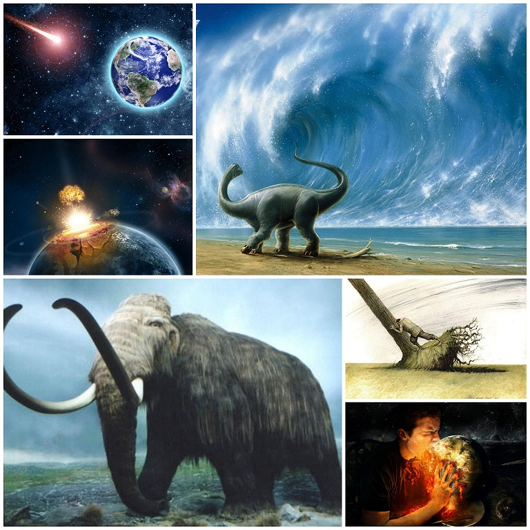 6 Pics for the 6th Sense : Extinction is No End of Earth