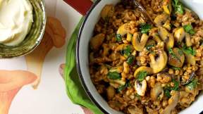 MODERN AUSTRALIAN Farro and three mushroom ragout