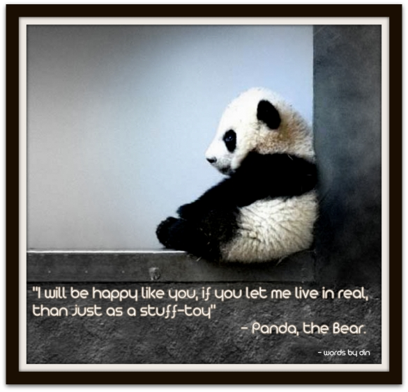 Panda Quotes Simple Powerful Quote 137  Panda The Bear Propel Steps