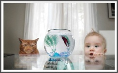 Child: Look at there... Wow.. How beautiful it is! Kitty : Yeah.. will be tasty too :P