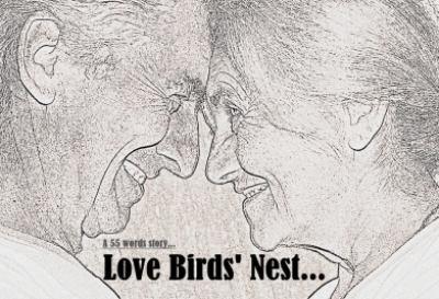 Love Birds Net