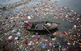 River Pollution in India (11)
