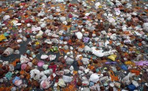 River Pollution in India (8)