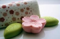 Soap15
